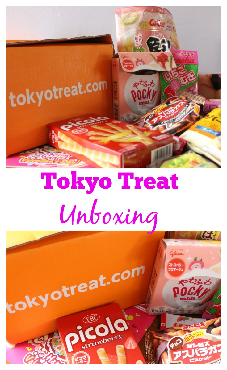 Tokyo Treat Unboxing: Father and Son Taste Test Battle