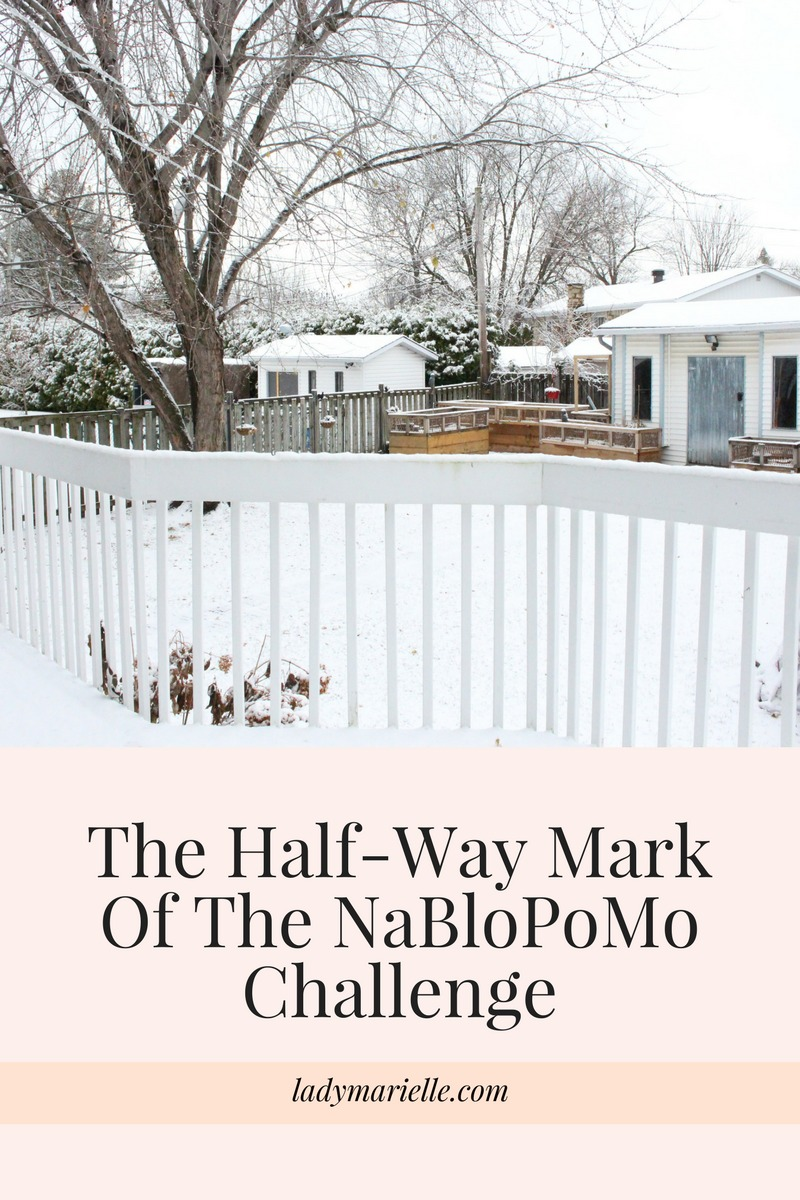 The Half Way Mark Of The NaBloPoMo Challenge