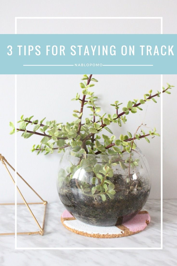 Day 4 Of NaBloPoMo + 3 Tips For Staying On Track
