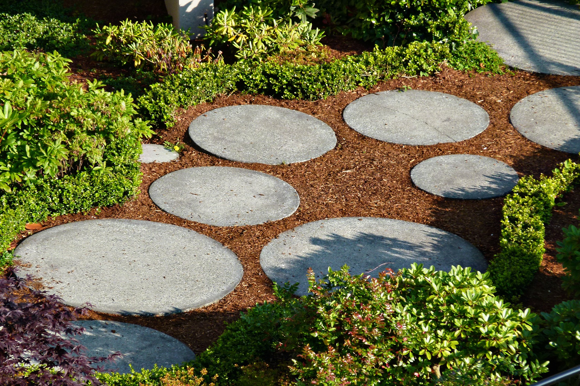 Splendid Paths: Design Ideas for Home Gardeners