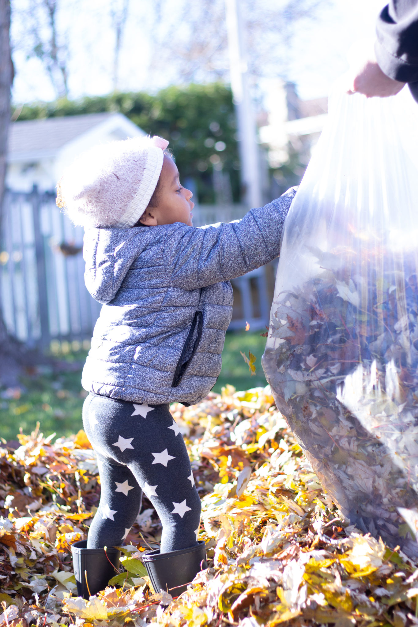 5 Important Tasks To Get Your Backyard Winter Ready