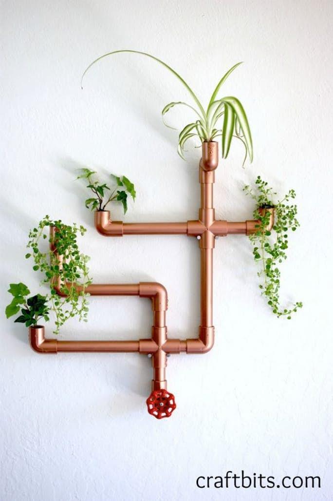 Creative Ways To Display Succulents