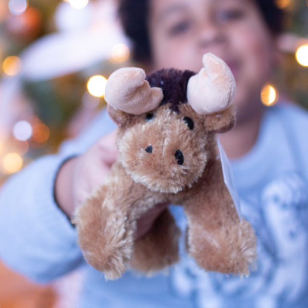 Adopt-an-Animal | A Meaningful Gift that Keeps On Giving