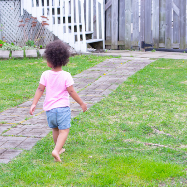 Simple Spring Lawn Care Tips