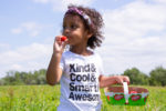 Picking Strawberries A. Belisle & Fils